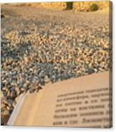 Reading A Book On Pebble Beach Canvas Print
