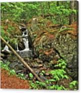 Reany Falls 3 Canvas Print