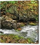 Reany Falls 4 Canvas Print