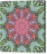 Red Amaryllis Trio Kaleidoscope Canvas Print