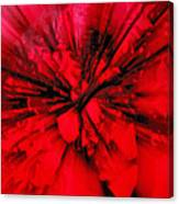 Red And Black Explosion Canvas Print