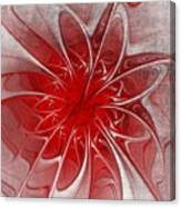 Red And Black  -f D- Canvas Print