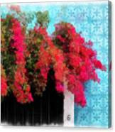 Bouganvillea And Blue Azulejos Canvas Print