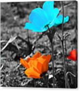 Red And Blue Flowers On Gray Background Canvas Print