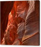 Red And Brown Swirling Sandstone Canvas Print