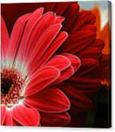 Red And Orange Florals Canvas Print