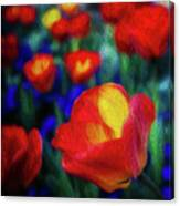 Red And Orange Tulips Canvas Print