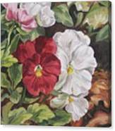 Red And White Pansies Canvas Print