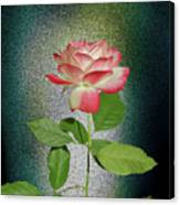 Red And White Rose5 Cutout Canvas Print
