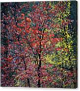 Red And Yellow Leaves Abstract Vertical Number 1 Canvas Print