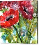 Red Anemone Flowers Canvas Print