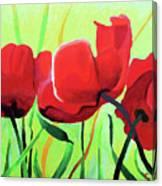 Red Anemonies Canvas Print