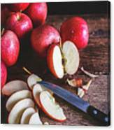 Red Apple Slices Canvas Print