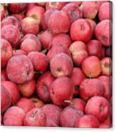 Red Apples Canvas Print