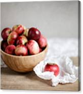 Red Apples Still Life Canvas Print