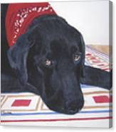 Red Bandana Canvas Print