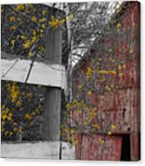 Red Barn And Forsythia Canvas Print