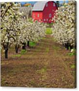 Red Barn Avenue Canvas Print
