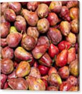 Red Bartlett Pears Canvas Print