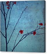 Red Berries Blue Sky Canvas Print