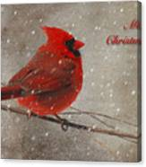 Red Bird In Snow Christmas Card Canvas Print