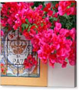 Red Bougainvilleas Canvas Print
