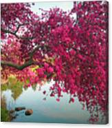 Red Bower Canvas Print