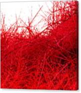 Red Expression Canvas Print