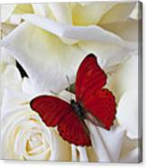 Red Butterfly On White Roses Canvas Print