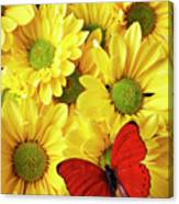 Red Butterfly On Yellow Mums Canvas Print