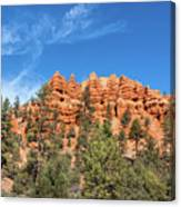 Red Canyon Tableau Canvas Print
