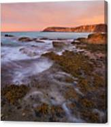 Red Dawning Canvas Print
