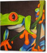 Red Eye Tree Frog Canvas Print