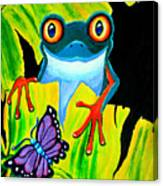 Red Eyed Tree Frog And Purple Butterfly Canvas Print