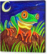 Red-eyed Tree Frog And Starry Night Canvas Print