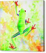 Red Eyed Tree Frog Canvas Print
