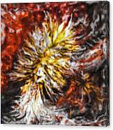 Red Flame Yucca Canvas Print