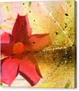 Red Floral Grunge Canvas Print