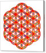 Red Flower Of Life Canvas Print