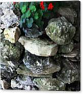 Red Flowers And Rocks Canvas Print