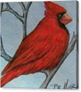 Red Fluff Canvas Print