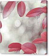 Red Foliage. Silver Light Canvas Print
