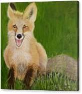 Red Fox 2 Canvas Print