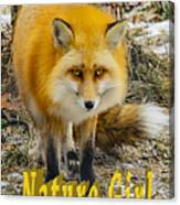 Red Fox Nature Girl Canvas Print
