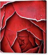 Red Frosty Metal Rose Canvas Print