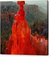 Red Glow Of The Sunrise On Thor's Hammer In Bryce Canyon Canvas Print