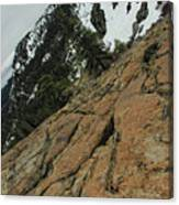 Red Granite Canvas Print