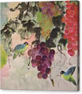 Red Grapes And Blue Birds Canvas Print