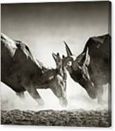 Red Hartebeest Dual In Dust Canvas Print