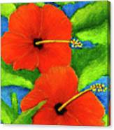 Red Hawaii Hibiscus Flower #267 Canvas Print